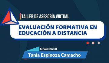 Taller de Asesoramiento Virtual de Evaluación Formativa en la Modalidad de Educación a Distancia para el Nivel Inicial